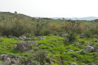 Hiking the Golan Heights